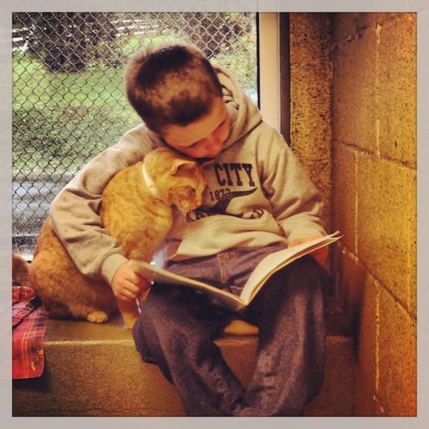 деца четат на котки от приют (1)