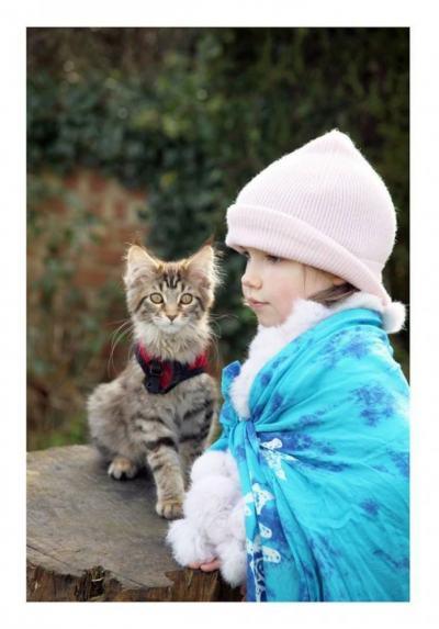 Котка е най-успешният терапевт на 5-годишното момиче с аутизъм, смаяло света с картините си
