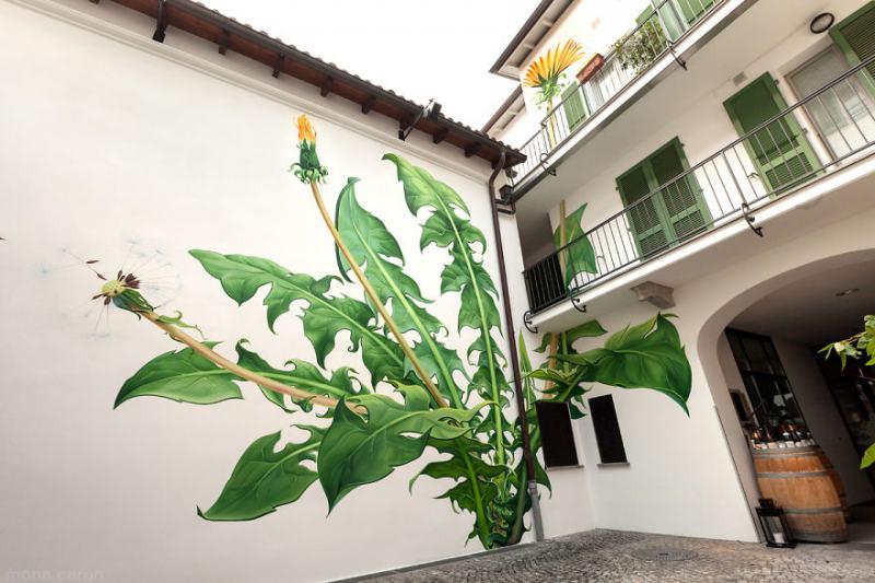 Плевели-графити превземат града (снимки и видео)