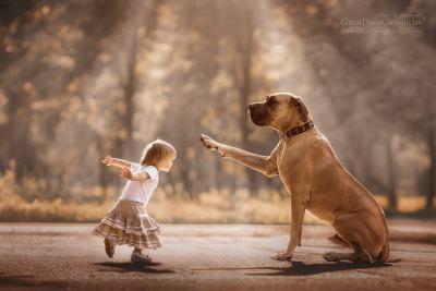 Малки деца и техните големи кучета (фотопроект)