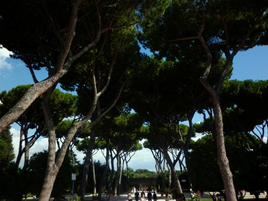 Портокаловата градина, разположена на хълма Авентин, разкрива една от най-красивите гледки към града