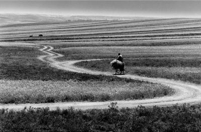 Пътят: фотографската изложба на Аббас Киаростами, един от представителите на Иранската нова вълна в киното, гостува и у нас