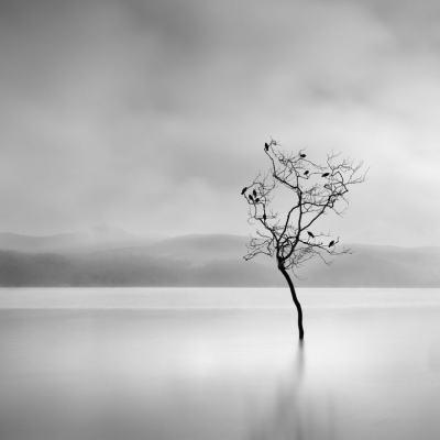 Сюрреалистични и минималистични: фотографиите на Йоргос Дигалакис