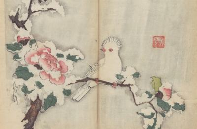 Най-старата цветна книга в света вече е достъпна онлайн (снимки)