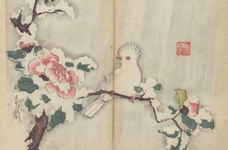 най-старата цветна книга (снимки)
