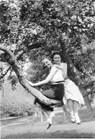 Women in Trees: колекционер събира редки фотографии на щастливи жени, снимани на дърво (между 20-те и 50-те)
