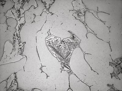 """Топография на сълзите: каталог с """"пейзажите на нашите емоции"""" (фото проект)"""