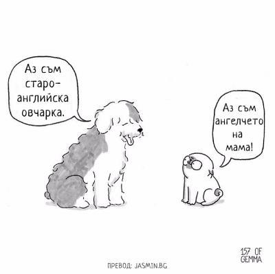 Какво чувства вашето куче? Испанска художничка отговаря в 14 забавни комикса