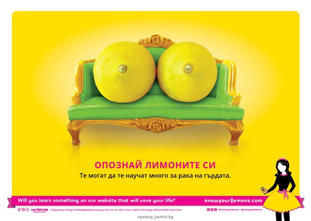Опознай лимоните си (илюстрация от информационната кампания)