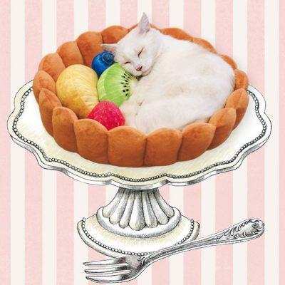 """Котешко легло за """"сладки"""" сънища"""