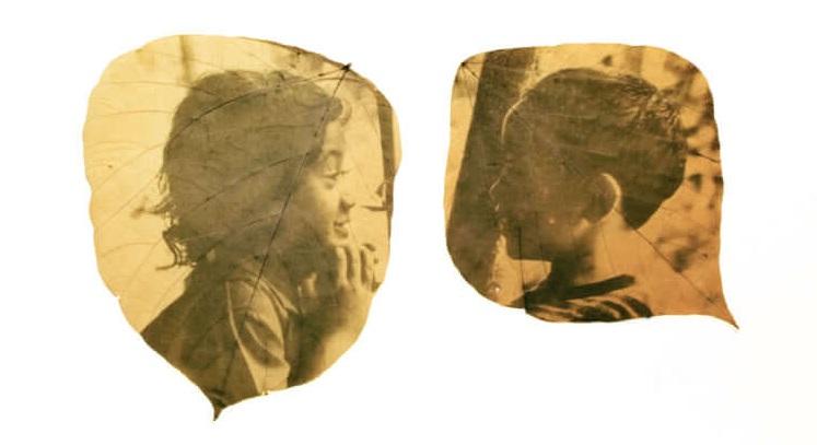 Хиро Чиба проявява спомените си върху паднали листа с помощта на слънцето (снимки)