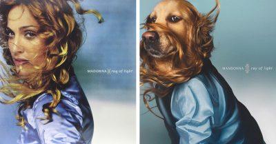 """Maxdonna: куче пресъздава емблематичните обложки на Мадона с благотворителна цел (и дори """"Кралицата на попа"""" споделя снимките му)"""