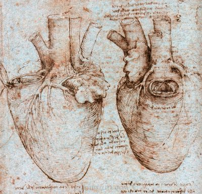 """Откъс (и илюстрации) от """"Леонардо да Винчи"""" на Уолтър Айзъксън"""