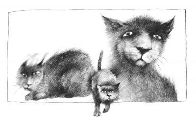 """Откъс от """"Страшни приказки за мрачни вечери"""" на Алвин Шварц (с оригиналните илюстрации на Стивън Гемъл)"""