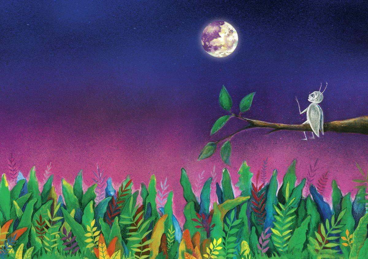 Приключенията на Пиляпа бялото бръмбарче