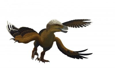 "Из ""Възход и падение на динозаврите"" от Стийв Брусати (с цветни илюстрации от единствения палеохудожник в България Владимир Николов)"