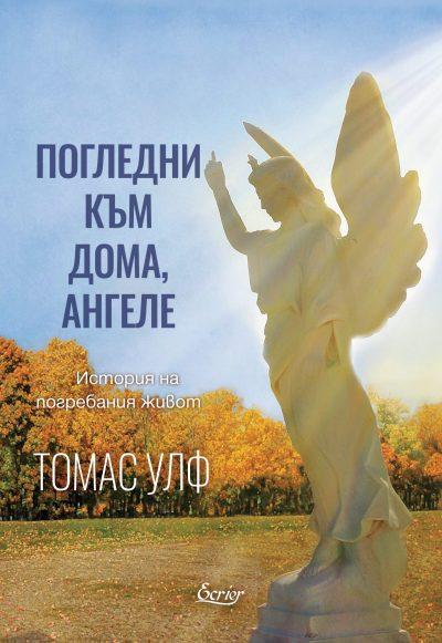 Погледни към дома ангеле: История на погребания живот (корица)