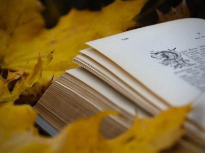 25+ книги за пъстри есенно-зимни пътешествия (из Алея на книгата 2020)