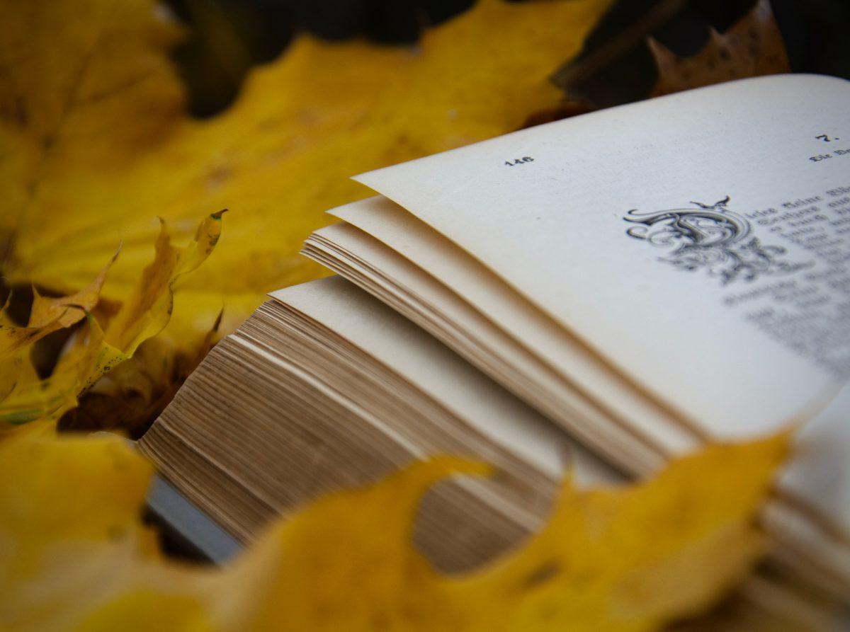 25+ книги за пъстри есенно-зимни пътешествия