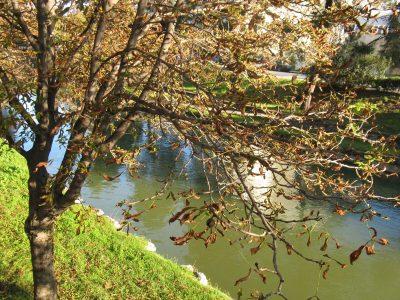 От Литеос до Перистери | Από τον Ληθαίο στο Περιστέρι