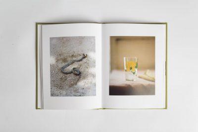 Басейн Рай: притихнал портрет на детството в една вълнуваща книга-дневник от Яна Лозева