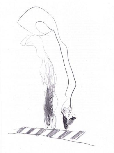 """""""Лиса"""" – из сборника разкази """"Дива луна"""" на Виктор Меламед"""